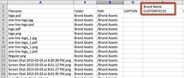 Metadata field names