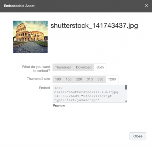 Embeddable asset and code