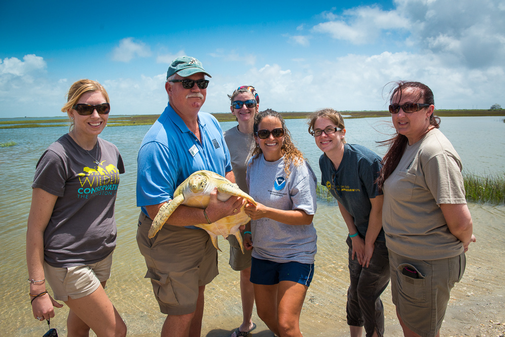 Houston Zoo's Dr. Joe Flanagan and NOAA Fisheries' Lyndsey Howell with Timothy the turtle. © Houston Zoo/Stephanie Adams