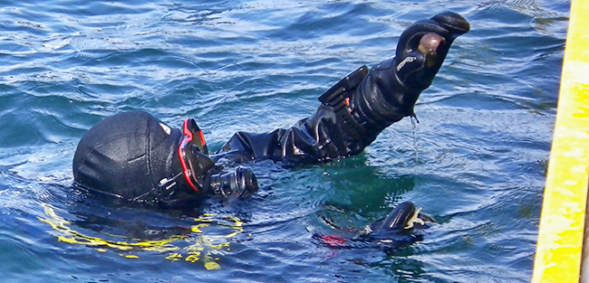 Scuba diver brings students an organism to hold and observe.