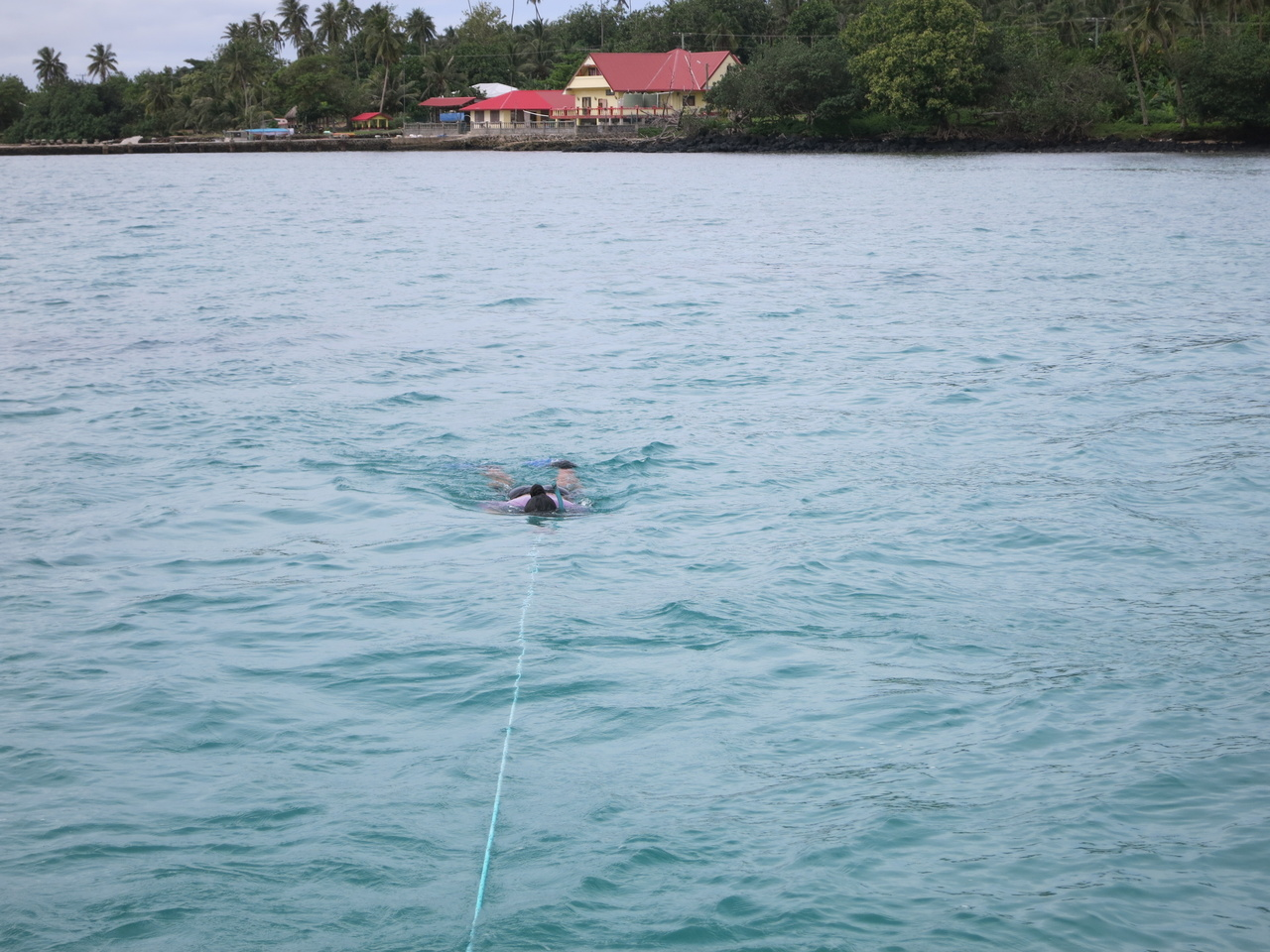 Researcher Maria Satoa surveys the seagrass beds and collects samples around Manono tai Island.