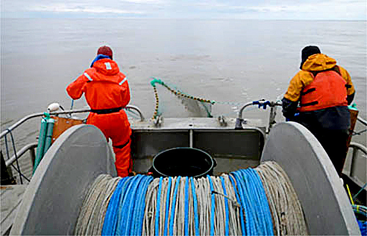 Retrieving the net from the Yukon River onboard the chartered fishing vessel Anchor Point.