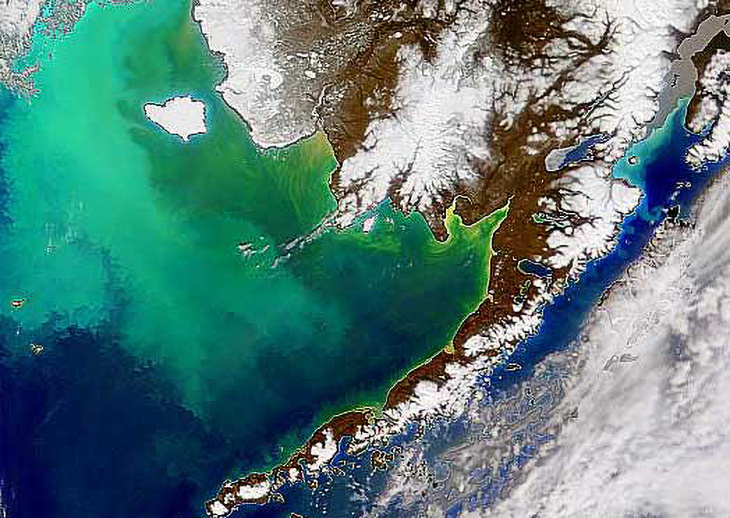 Image taken on April 25, 1998, shows the coccolithophore bloom in the Bering Sea.