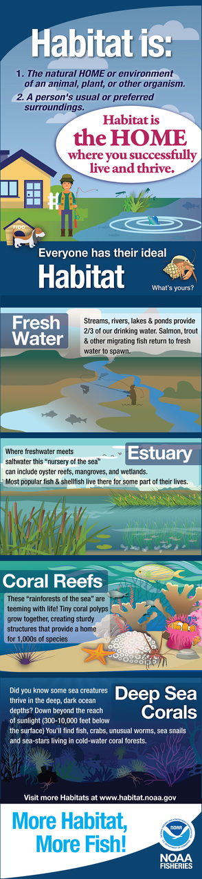 "Infographic - ""What is Habitat"" - provides basic information on fresh water, estuary, coral reef and deep sea coral habitats."