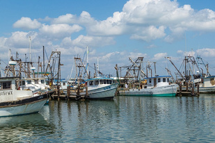 Fishing boats in Fulton Harbor, TX