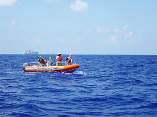 Scientific boat sampling bottomfish with the NOAA Ship Oscar Elton Sette in the background