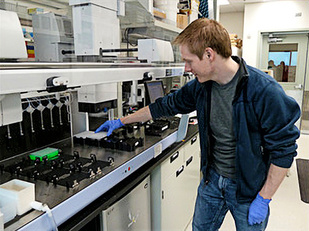 Geneticist loading DNA plate for genotyping.