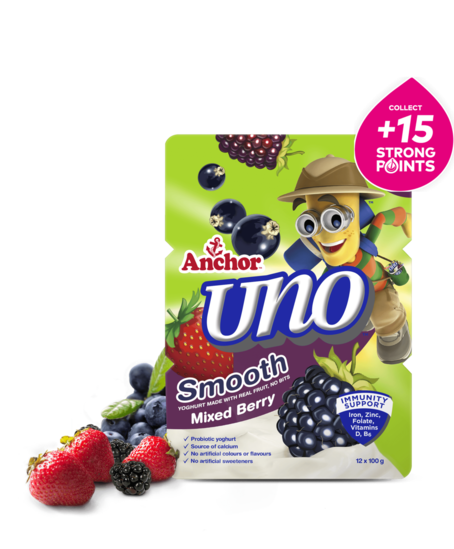 Anchor Uno Mixed Berry Yoghurt 12 x 100g pack
