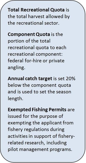 Recreational fishing terms explained.