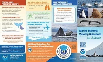 Alaska marine mammal viewing guidelines and regulations booklet