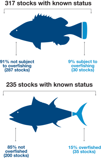 Graphic showing overfished or overfishing stock status percentages.